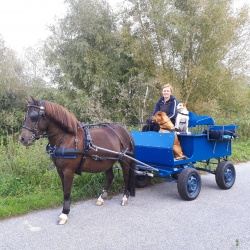 Ingeborg Tromp Dagbesteding Buitenleven